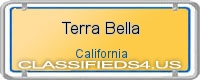 Terra Bella board